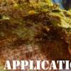 Applications of Scuba Diving